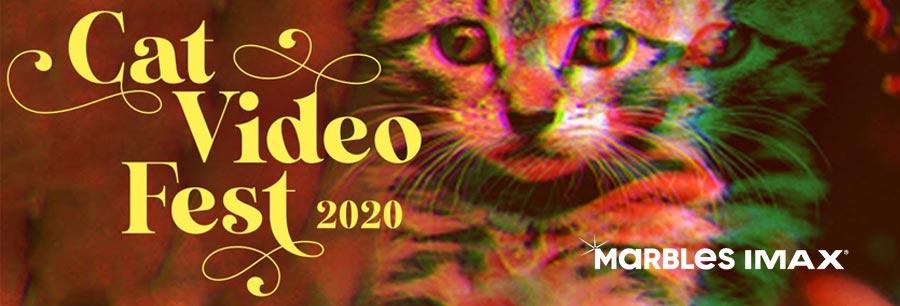 CatVideoFest 2020 Billboard Image