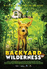 Backyard Wilderness: Lights Up Sound Down 2D poster