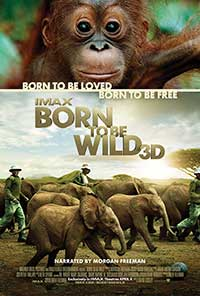 Born to be Wild: Lights Up Sound Down 2D poster