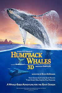 Humpback Whales: Lights Up, Sound Down 2D poster