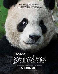 Pandas 3D poster